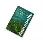 泰国安娜贝拉Annabella海藻面膜10片装 补水保湿收毛孔消炎